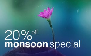 Monsoon Special 20% off